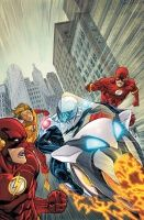 THE FLASH: THE ROAD TO FLASHPOINT HC