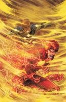 THE FLASH #8