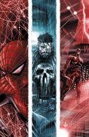 The Punisher #10 (Adi Granov Variant)
