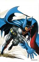 BATMAN: ILLUSTRATED BY NEAL ADAMS VOL. 1 TP