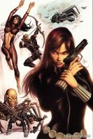 SECRET AVENGERS #1 (Mike Deodato Variant)