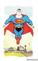 SUPERMAN FOR ALL SEASONS DELUXE EDITION HC