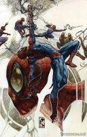 AMAZING SPIDER-MAN ANNUAL #1(Simone Bianchi Variant)