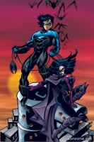 NIGHTWING VOL. 3: FALSE STARTS TP