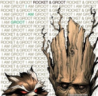 ROCKET RACCOON & GROOT #1 (Hip-Hop Variant)