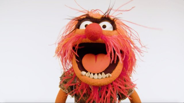Animal Shares Some Deep Thinking | Muppet Thought of the Week by The Muppets