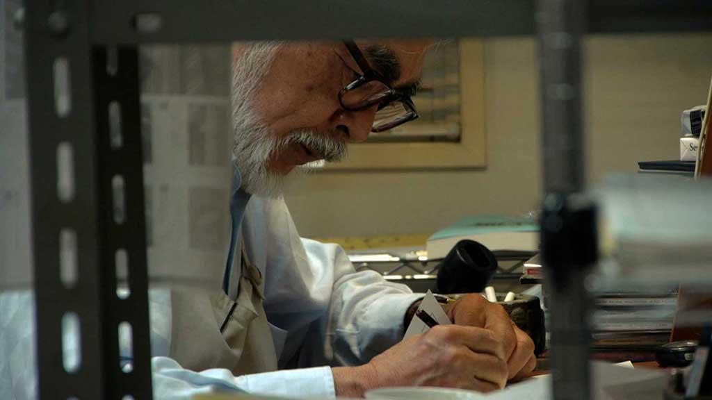 Kingdom of Dreams and Madness Hayao Miyazaki
