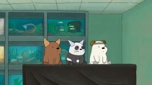 We Bare Bears Pet Shop